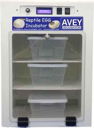 Reptile & Snake Egg Incubator